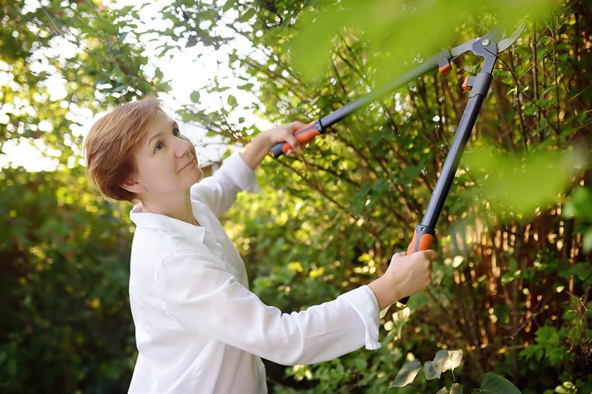 Woman using long secateurs